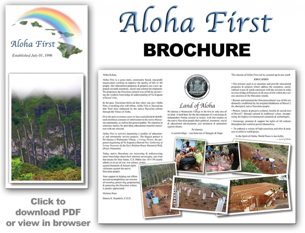 AlohaFirst-Brochure-2013-large